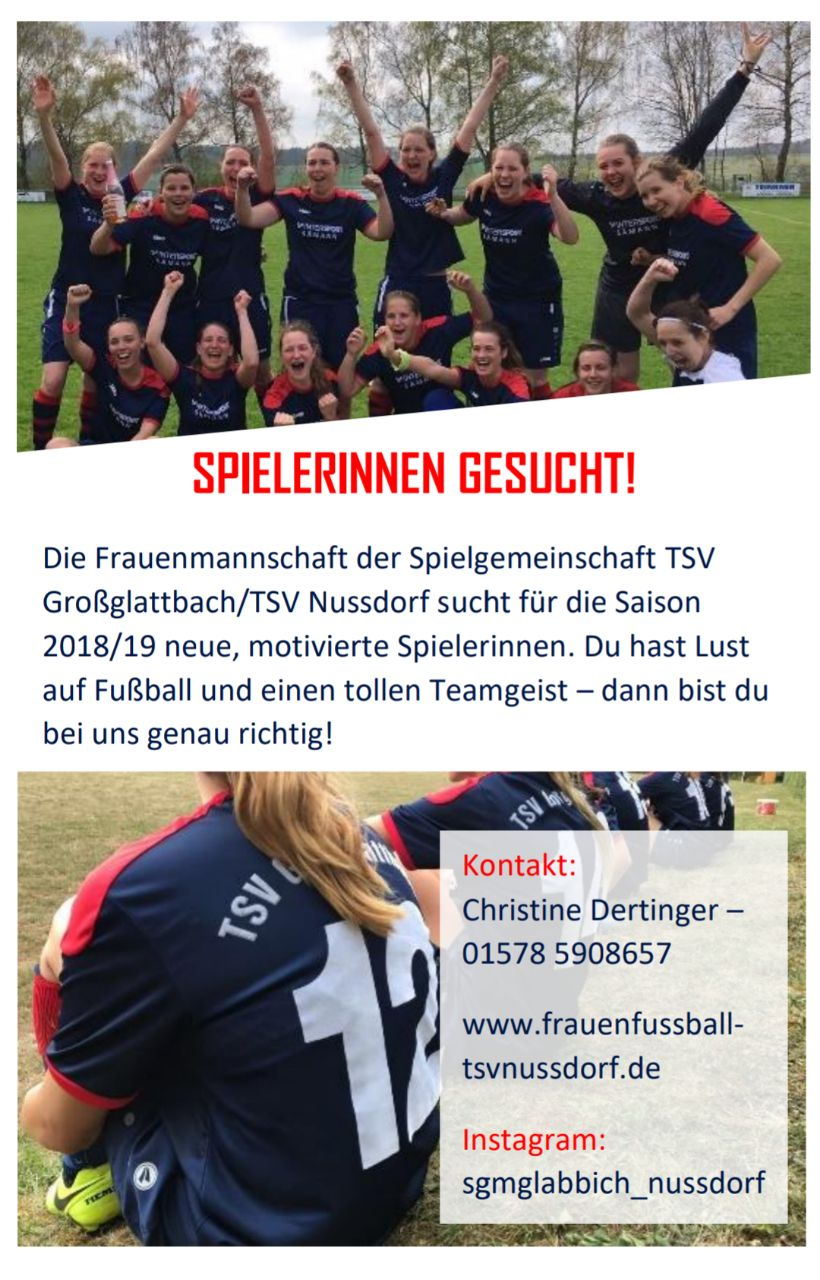 Flyer_SpielerGesucht